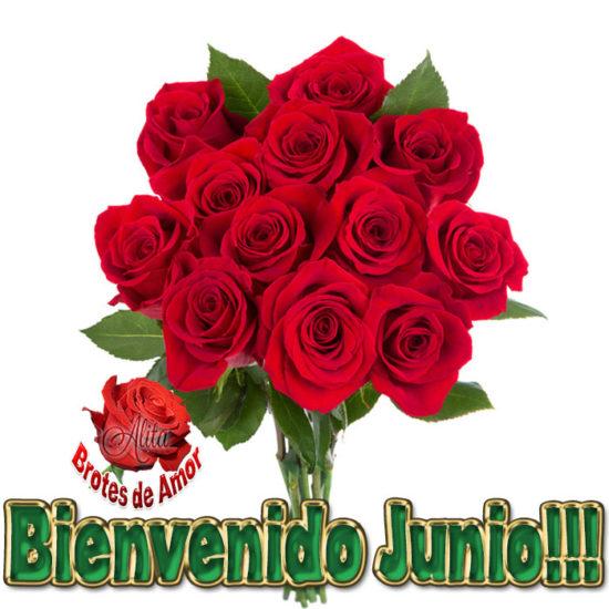 Bienvenido JUNIO (6)