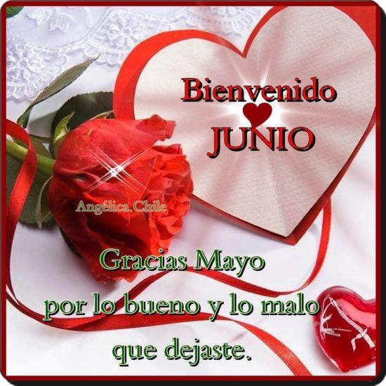 Bienvenido JUNIO (7)