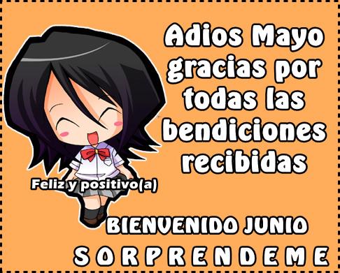 Bienvenido JUNIO (8)