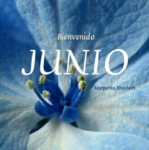 Bienvenido JUNIO (9)
