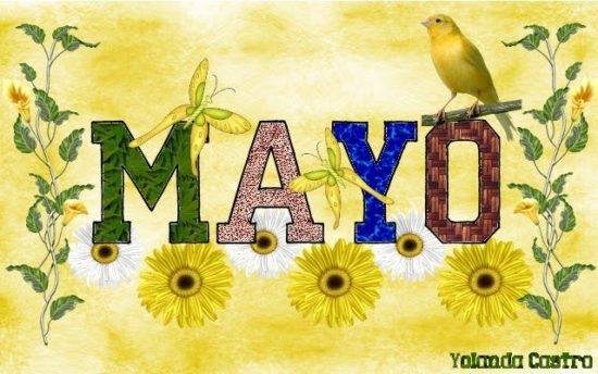 Bienvenido Mayo - Hola Mayo (7)