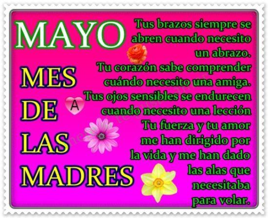 Bienvenido Mayo - Hola Mayo (8)