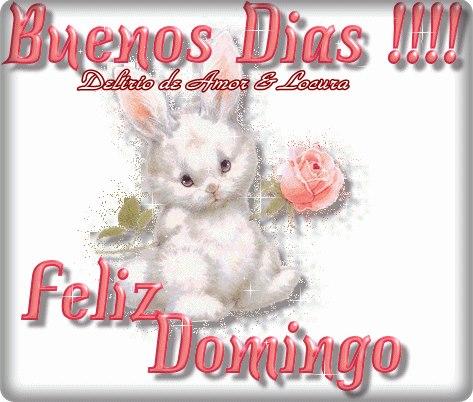 Buen Feliz Domingo (3)