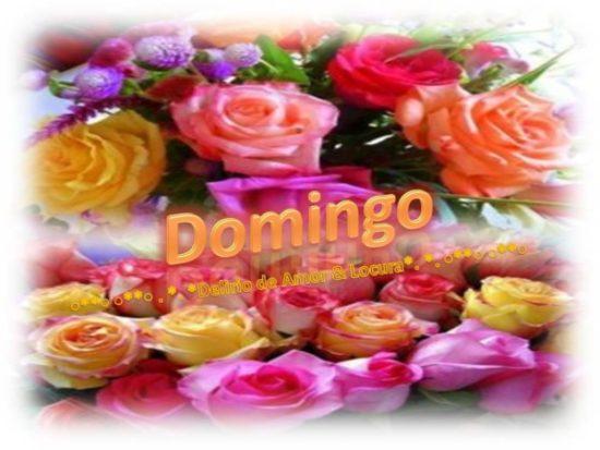 Buen Feliz Domingo (4)