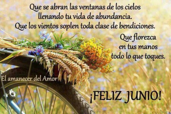 Felíz mes de Junio (9)