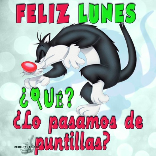 Feliz Lunes (15)