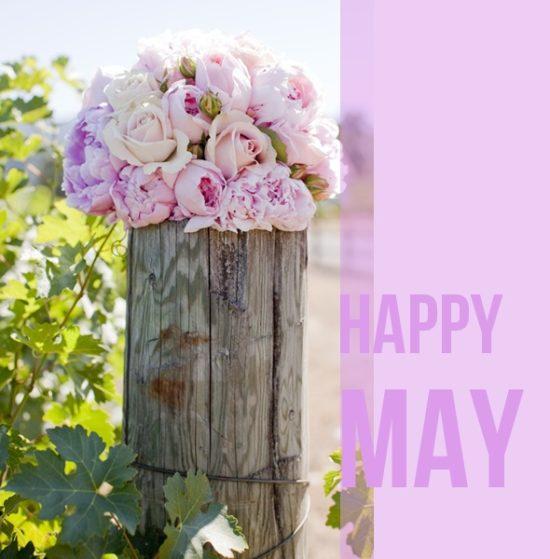 Hello May - Hola Mayo (11)