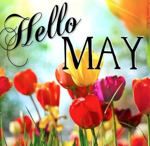 Hello May - Hola Mayo (15)