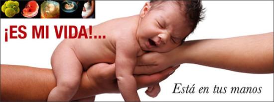 Niño por nacer (7)