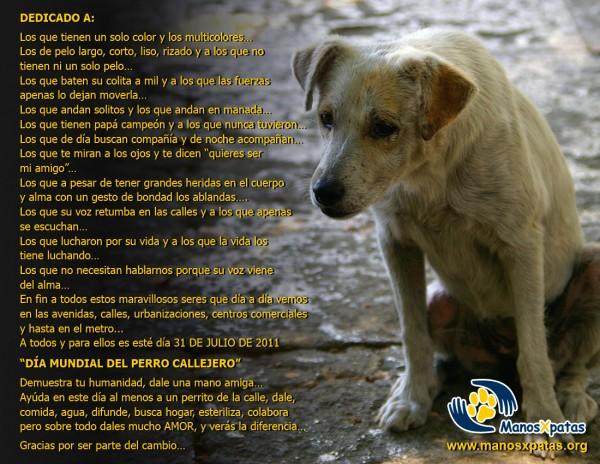 afiche-para-facebook