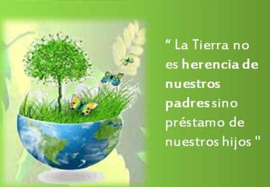 día del medio Ambiente (23)