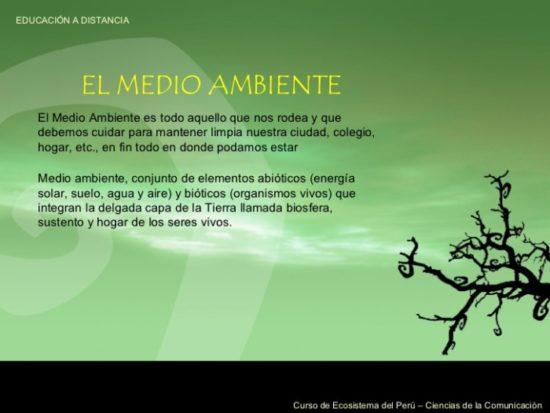 día del medio Ambiente (25)