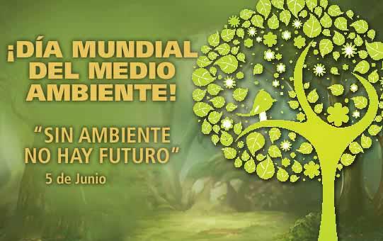 día del medio Ambiente (27)