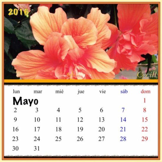 Calendario Mayo 2016 (11)
