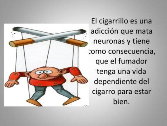 Día Mundial sin Tabaco información (2)