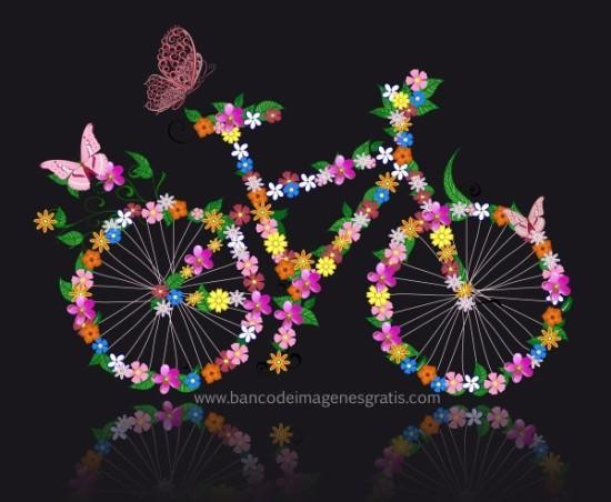 Día de la Bicicleta  (1)