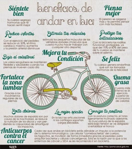 Día de la Bicicleta  (3)