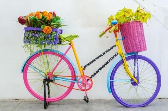 Día de la Bicicleta Frases mensajes  (6)
