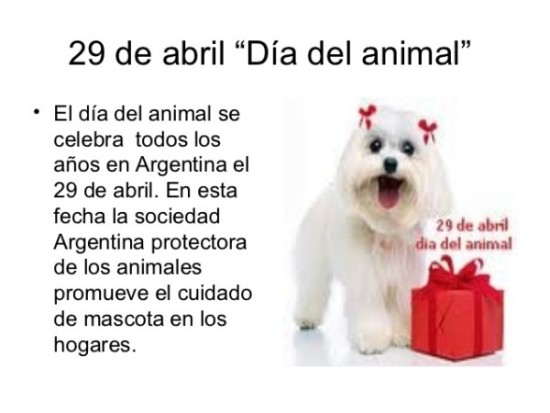 Día del Animal - frases (12)