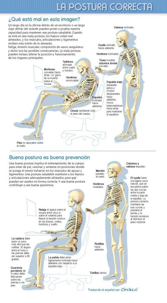Infografía La Postura Correcta
