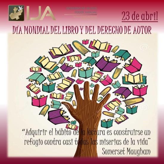 Día del Libro frases  (12)