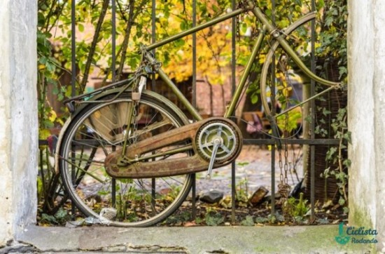 Feliz Día de la Bicicleta  (1)