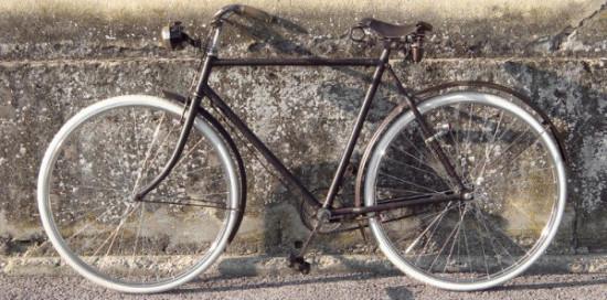 Feliz Día de la Bicicleta  (9)