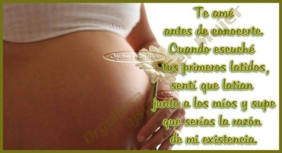 Feliz dia de la Madre Frases  (14)