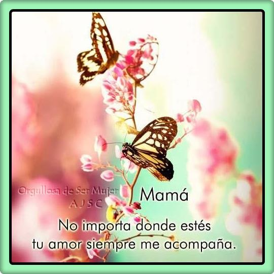 Feliz dia de la Madre Frases  (22)