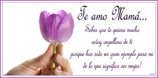 Feliz dia de la Madre Frases  (8)