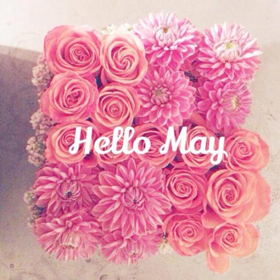 Hello May - Hola Mayo  (1)