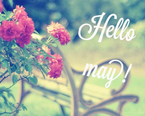 Hello May - Hola Mayo  (10)
