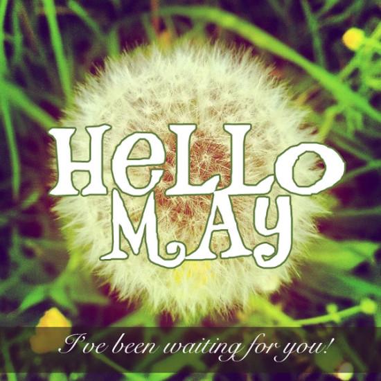 Hello May - Hola Mayo  (14)