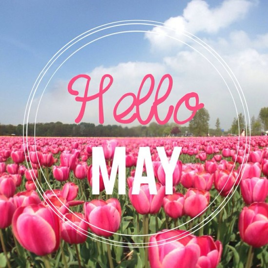 Hello May - Hola Mayo  (18)