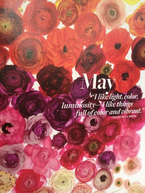 Hello May - Hola Mayo  (20)