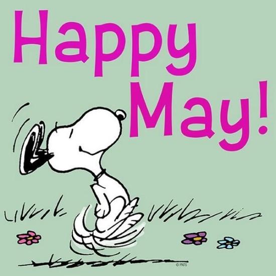 Hello May - Hola Mayo  (3)