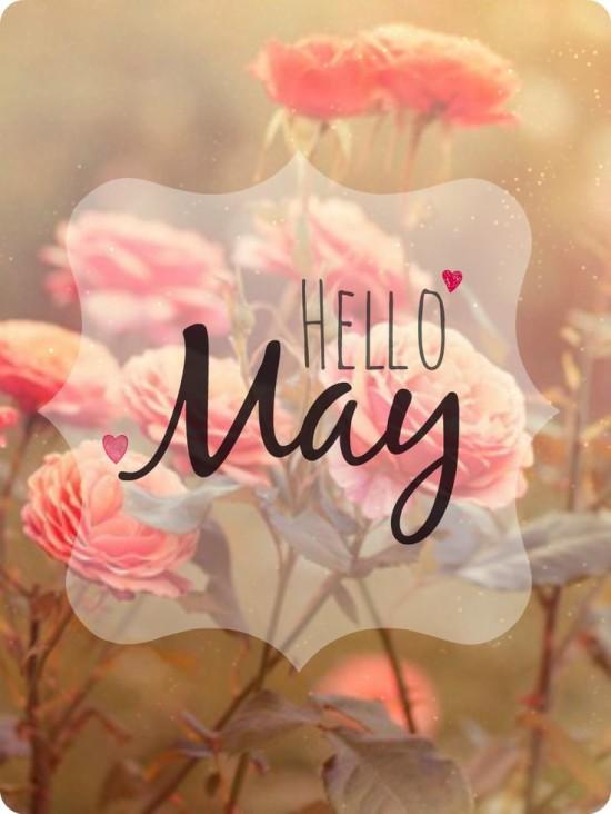 Hello May - Hola Mayo  (8)