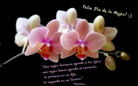 Imágenes para Dia de la Mujer (2)