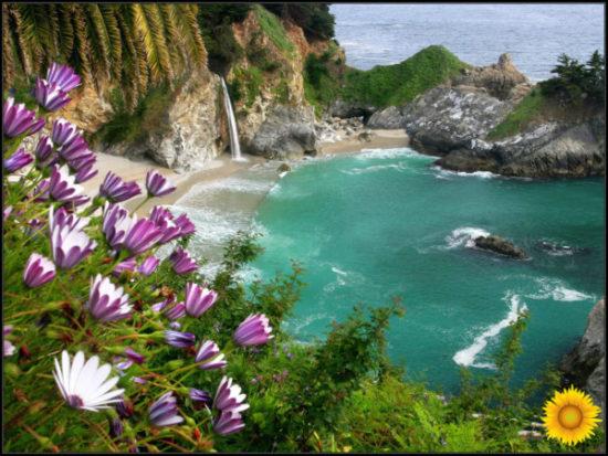 Paisaje con Flores (5)