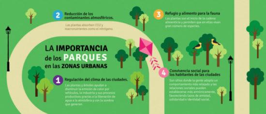 como cuidar el medio ambiente (13)