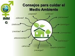 como cuidar el medio ambiente (3)