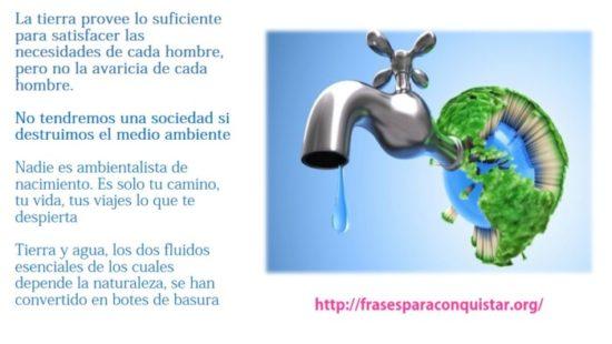 como cuidar el medio ambiente (4)