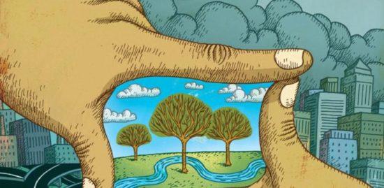 cuidados del Medio Ambiente (3)