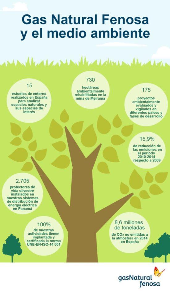 día del Medio ambiente (7)