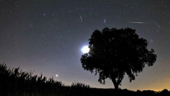 estrellas fugaces  (10)