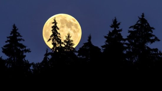 imagen de la luna (10)