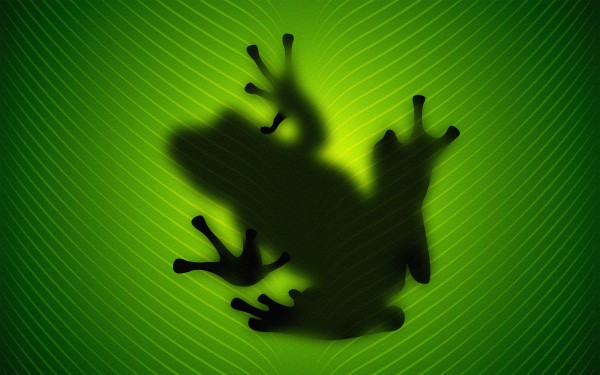 sombra-de-rana-52031d5e9810b