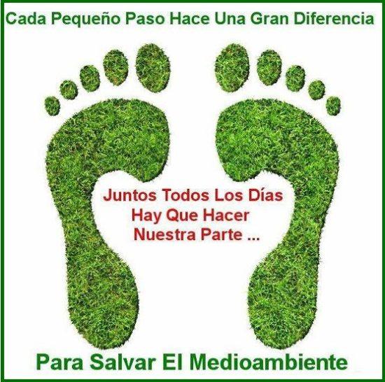 tips para cuidar nuestro medio ambiente (1)