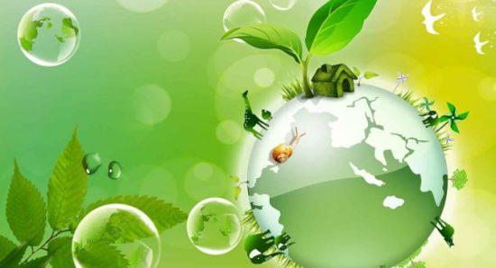 tips para cuidar nuestro medio ambiente (7)