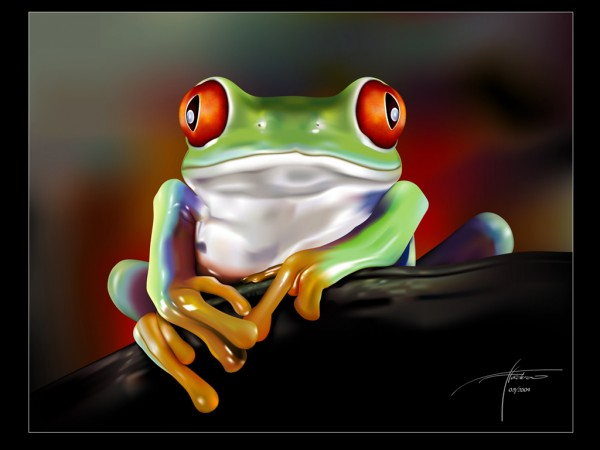 ws_Red_Eye_Frog_1024x768